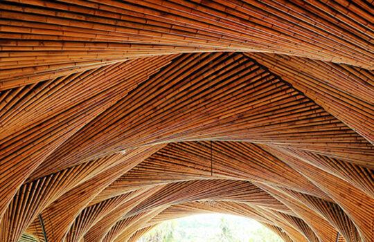 استفاده از بامبو در ساختمان سازی